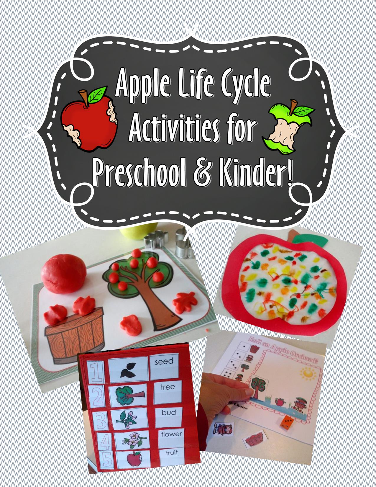 image regarding Apple Life Cycle Printable named Fresh new Apple Existence Cycle Packet and No cost Printable Training
