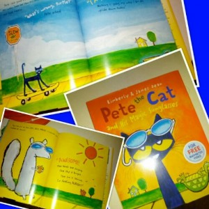 Pete the Cat Sunglasses
