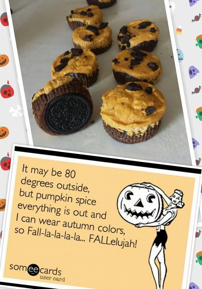 Fall Bites